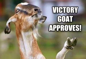 victory goat
