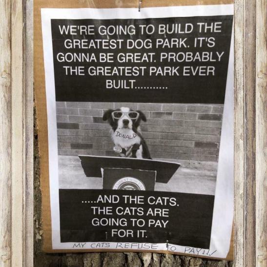 build a dog part
