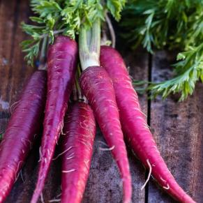 purple_carrots_grande